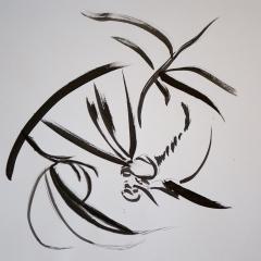 Aerial Bug